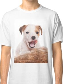 Jack Russell Terrier puppy Classic T-Shirt
