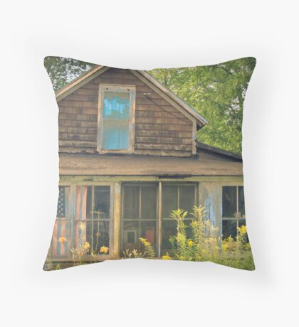 american decay Throw Pillow