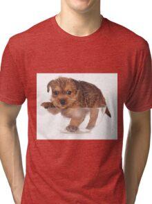 red terrier puppy Tri-blend T-Shirt