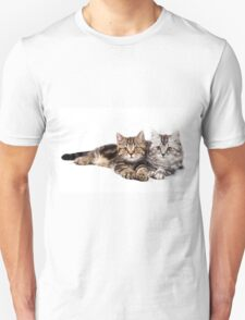Two striped cat with big paws T-Shirt