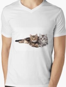 Two striped cat with big paws Mens V-Neck T-Shirt