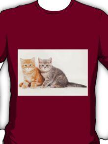 Two striped kitten T-Shirt