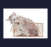 Funny striped kitten Kids Tee