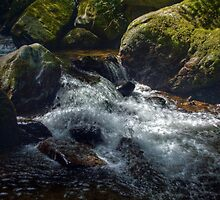 Brook - the river Lyn in Lynmouth, Devon by Andy Morley