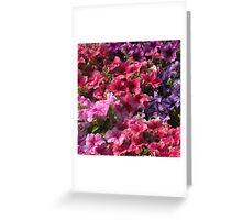 Colorful photo of pink purple flowers pattern  Greeting Card