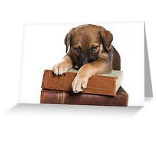 Funny brown puppy and book Greeting Card