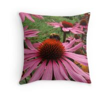 Bee and Echinacea Throw Pillow