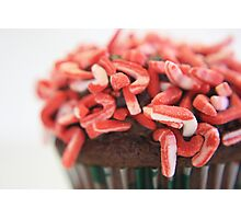 Candy Cane minis-1 Photographic Print