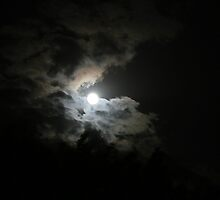 Moonstruck by patjila