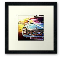 Sunbeam Framed Print