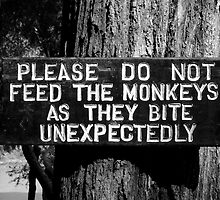 Monkey sign by benstrong