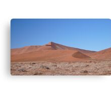 Namib desert dunes Canvas Print
