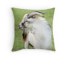 Little Big Guy Throw Pillow