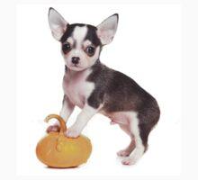 chihuahua puppy Kids Tee