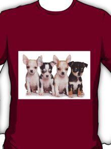 Four cute chihuahua puppy T-Shirt