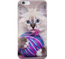 fluffy kitten iPhone Case/Skin