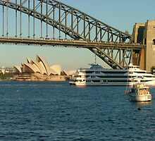 Sydney Harbour by Lisa Williams