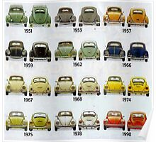 Beetle Time line Poster