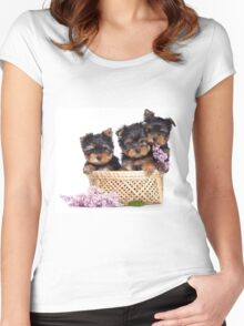 Three Puppy York and flowers Women's Fitted Scoop T-Shirt