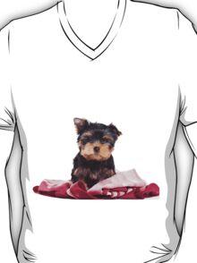 Puppy York T-Shirt