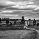Rural Road ,Victoria   by Christine  Wilson Photography