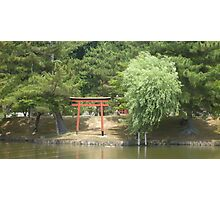 Japanese Gate on a Pond Photographic Print