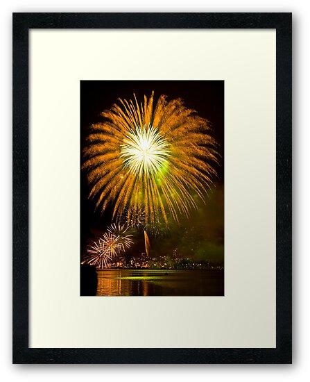 Single Sunflower Supernova - Sydney Harbour - New Years Eve - Midnight Fireworks  by Bryan Freeman