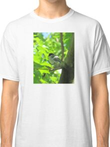 Cute baby bird on branch Classic T-Shirt