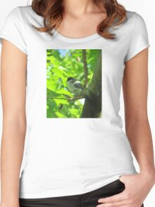 Cute baby bird on branch Women's Fitted Scoop T-Shirt