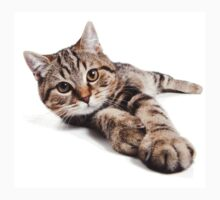 tabby cat with big paws Kids Tee