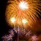 Sunflower Burst - Sydney Harbour - New Years Eve - Midnight Fireworks by Bryan Freeman