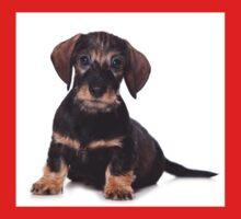 Cute Puppy dachshund One Piece - Short Sleeve