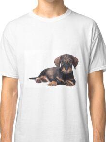 Cute Puppy dachshund Classic T-Shirt