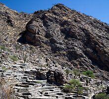 Ruinas de Quilmes, Tucuman Province, Argentina by parischris