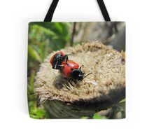 beetles mate, not by stealth Tote Bag