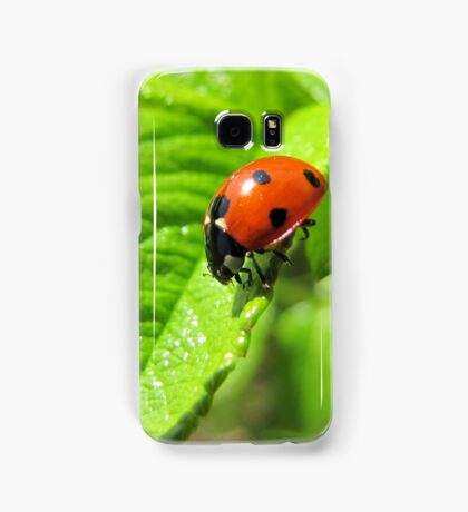 Ladybug walked on the leaf like never before Samsung Galaxy Case/Skin