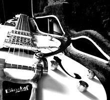 The Gretsch by Shannyn