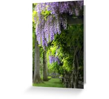 Wisteria Woodland Greeting Card