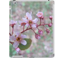Dwarf serviceberry in freedom iPad Case/Skin