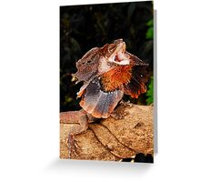 Frilled Lizard (Chlamydosaurus kingii) Greeting Card