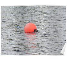 Good  buoy Poster