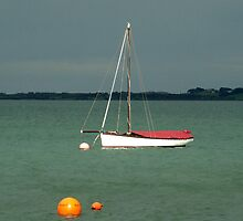 Sail Boat by Andrew Turley