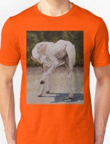 Baby Ballet Unisex T-Shirt