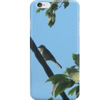 bird bird is the word :) iPhone Case/Skin