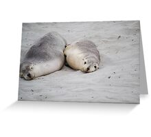 Seals Greeting Card