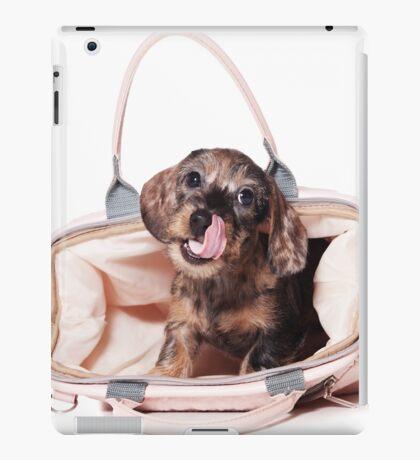Cute Funny dachshund puppy iPad Case/Skin
