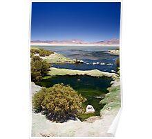 Stunning Tara Lake, Atacama Desert, Chile Poster