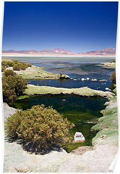Stunning Tara Lake, Atacama Desert, Chile by parischris