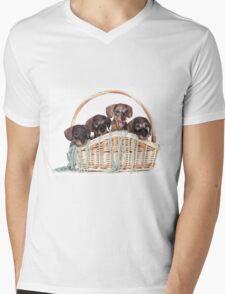 Four dachshund puppy in a basket Mens V-Neck T-Shirt