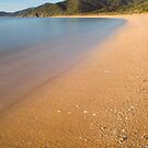 Totaranui Beach, Abel Tasman National Park 7 by Paul Mercer